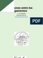 Relaciones entre los organismos.pptx