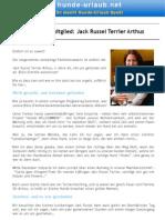10_Neues Teammitglied Jack Russel Terrier Arthus