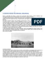 silo.tips_o-negro-na-sociedade-aucareira.pdf