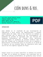 Correlacion_Duns__Ros_5e7ea5e2ef72b