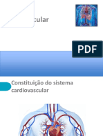 PP_sistema circulatorio