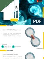 1 DNA e síntese proteica