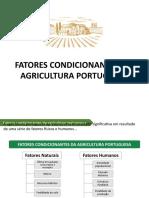fatores condicionantes Agricultura