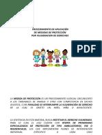Medidas de Proteccion Juzgado de Familia.ppt