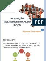 AVALIAÇAO MULTIDIMENSIONAL DO IDOSO.pdf