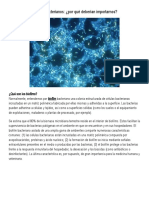 Biofilms bacterianos.doc