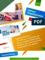 AULA 3 - Cultura Organizacional