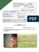 GUÍA-N-6-INTEGRADA-COE_-FISICA-APLICADA-DEP-II-J.M-11