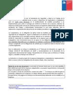 modelo-programa-preventivo-11082020