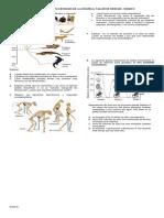 Taller evolucion fosilesx