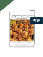Los colonizadores vegetales del estrecho de Magallanes y su función indicadora en el cambio climático