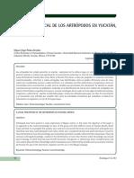 UnaMiradaLocalDeLosArtropodosEnYucatanMexico-5261809