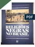 Vagalume... In Religiões Negras.pdf