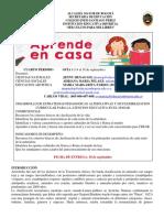 guia integrada 1-4 (2).pdf