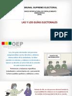 GUIAS ELECTORALES P1