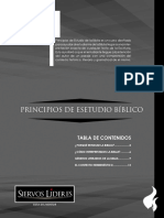 01.01_mentor_principios-final-print__1_