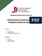 TP FERMENTACIÓN EN SÓLIDOS (2)