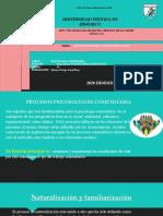 naturalizacion y familiarizacion.pptx