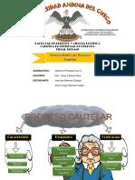 Generalidades Del Proceso Cautelar