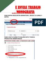 GUIA DE ENVIAS TRABAJO DE MONOGRAFIA.pdf