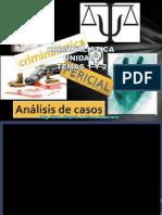 TEMAS 1 Y 2 CRIMINALISTICA