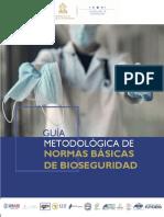6. Guía Metodológica.pdf