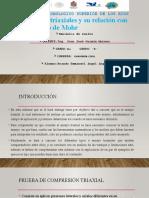 Tem_7_prueba_traxial