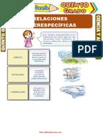Relaciones-Interespecíficas-para-Quinto-Grado-de-Primaria.doc