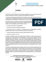 Duhalde, Miguel - El teletrabajo docente