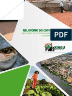 Relato_rio PDRS - 2015.pdf