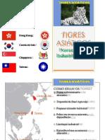 Tigresasiticos Sia3anoprof 170731013528 (1)