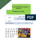 lab de tornillos  terminado.pdf