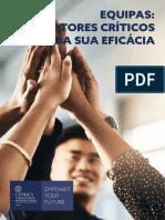 Equipas_Fatores_Critico_da_sua_Eficacia