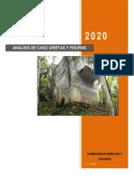 ACTIVIDAD 1 ANALISIS DE CASO GRIETAS Y FISURAS.pdf
