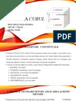 Metoda Cubul Petrina