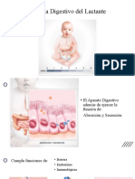 clase introducción aparato digestivo y alimentación complementaria CLASE