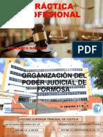 PRÁCTICA PROFESIONAL (1).pptx