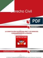 MODULO 1 -DERECHOS FUNDAMENTALES- DERECHO CIVIL.pdf