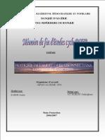 230234956-auditKPMG-pdf.pdf