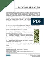 69_Extracao_de_DNA_procedimento_basico.pdf
