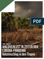 WWF-Analyse-Waldverlust-in-Zeiten-der-Corona-Pandemie
