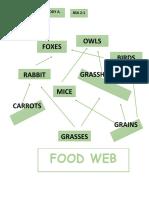 FOOD WEB.docx