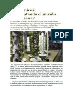 Aeropónicos.pdf