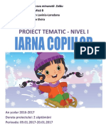 iarna_proiect_tematic