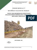 INFORME MENSUAL SST_07.docx
