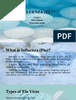 INFLUENZA (FLU) Group 3