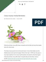 Cistus incanus Herbal Remedies - Linden Botanicals