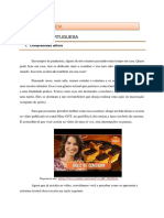 2° Ano - Lingua portuguesa