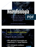 NEURurofisiologia - neurophysiology[1]