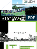 AUCAYACU.pptx